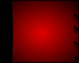 br-11