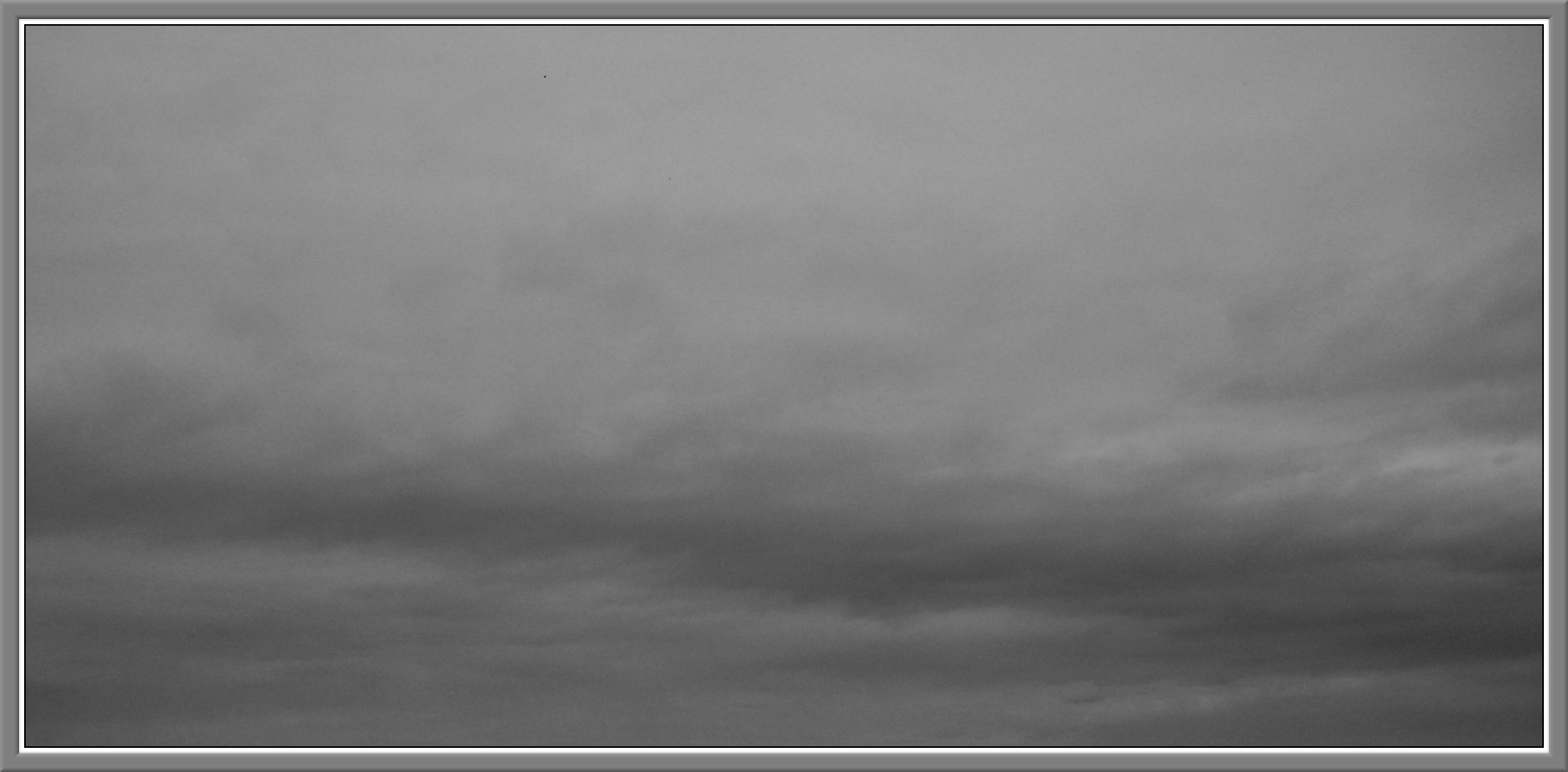 external image gris.jpg